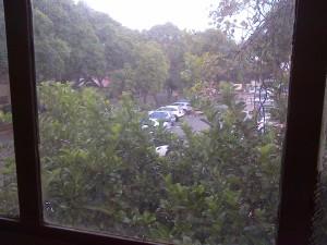 study-window view